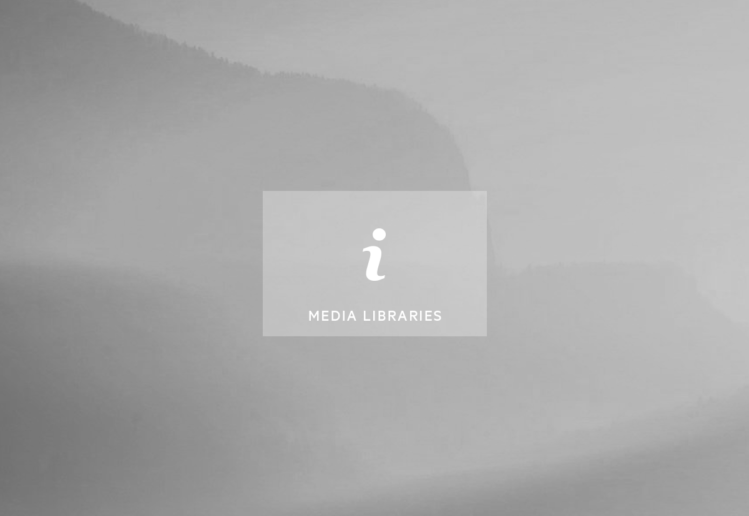 Publicly Accessible and Copyright Free Media Libraries