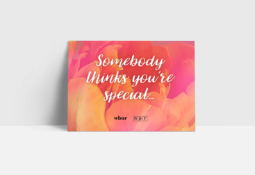2020 Mother's Day Audio Card Campaign for WBUR | LILLIAN LEE Art & Design