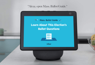 In Collaboration with WBUR Project Citrus Team's Voice-Activated Voter Guide | lillian lee design & illustration